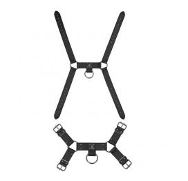 Harness & Strap-On